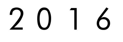 Neujahr 16